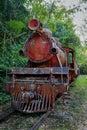 Rustic train in jungle