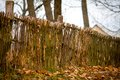 Rustic wicker fence and like Royalty Free Stock Image