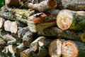 Rustic woodpile of firewood closeup. Abstract background Royalty Free Stock Photo