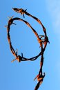 Rusty barbed wire loop against blue sky backdrop Royalty Free Stock Image