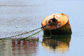 Rusty buoy with ropes in port water Stock Images