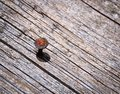 Rusty nail in an old wooden board Royalty Free Stock Photo