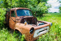 Rusty old farm truck a overgrown with trees and weeds in a field Royalty Free Stock Images