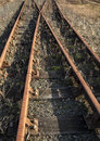 Rusty overgrown old rail tracks Royalty Free Stock Photo