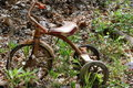 Rusty tricycle 3 Royalty Free Stock Images