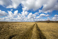 Rut road in steppe under nice clouds sky Royalty Free Stock Images