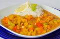 Rutabaga swede curry with coconut rice dish of vegetables in a sauce a lemon cup of on the background Stock Images