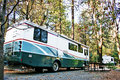 RV Campsite in the Forest Royalty Free Stock Photos