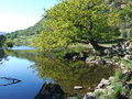 Rydal Water in Spring Royalty Free Stock Photo