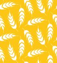Rye  corn floral simple silhouette yellow background seamless vector pattern Royalty Free Stock Photo