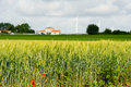 Rye field with farmhouse and wind turbines Royalty Free Stock Photography