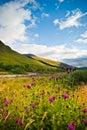 άγρια περιοχές της Σκωτία&s Στοκ φωτογραφία με δικαίωμα ελεύθερης χρήσης