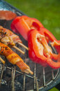 It s barbecue time summer tasty grilled meat and vegetables Royalty Free Stock Photo