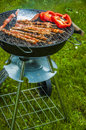 It s barbecue time summer tasty grilled meat and vegetables Stock Photography