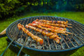 It s grilling time summer tasty grilled meat and vegetables Royalty Free Stock Photos