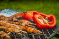 It s grilling time summer tasty grilled meat and vegetables Stock Images