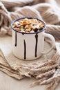 S`mores hot chocolate mini marshmallows cinnamon winter drink Royalty Free Stock Photo