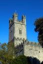 大教堂城市爱尔兰五行民谣玛丽s st 图库摄影