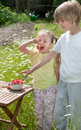 It s summertime kids snacking strawberries fresh from the gard two garden Stock Image