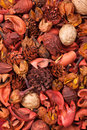 Sachet background exotic dried flowers fruits Stock Images