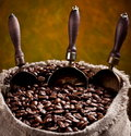 Sack of coffee beans and scoop. Royalty Free Stock Photo
