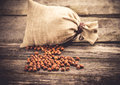 Sack of hazelnuts shelled on wood background Stock Photos