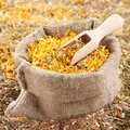 Sack of healing herbs and wooden scoop herbal medicine Royalty Free Stock Image