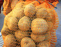 Sack of potatoes in plastic at the market in autumn Royalty Free Stock Images