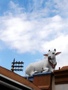 Sacred cow sculpture hindu temple asia a photograph showing a holy statue of a stone on the roof of a historic hinduism in Royalty Free Stock Photo