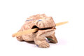 Sacred frog beautiful shot of wooden with stck on white background Stock Photos