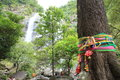 The sacred tree at klonglan waterfall in thailand colorful ribbons tied around trunk to symbolize worship of a which is believed Stock Photo