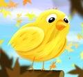 Sad bird Royalty Free Stock Image