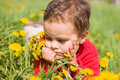 Sad boy with a bouquet of dandelions Royalty Free Stock Images