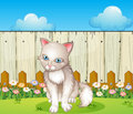 A sad cat near the wooden fence illustration of Stock Photo
