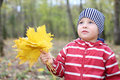 Sad little boy holds maple leaflets looks up yellow shallow depth of field Stock Image