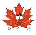 Sad mapple leaf cartoon Royalty Free Stock Photo