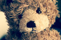 Sad teddy bear brown portrait Royalty Free Stock Image