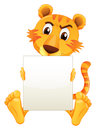 A sad tiger sitting holding an empty cardboard illustration of on white background Stock Image