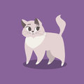 Sad, worried and cute violet kitten. Vector illustration. Royalty Free Stock Photo