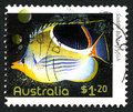 Saddle Butterflyfish Australian Postage Stamp