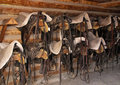 Saddles and Bridles Royalty Free Stock Photo