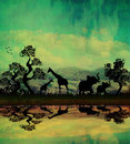 Safari in africa silhouette of wild animals reflection water Stock Image