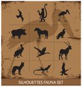 Safari fauna symbols silhouette set collection isolated Stock Photos