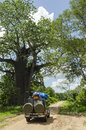 Safari jeep on dirtroad leading to selous game reserve old tree in the roadside pwani region tanzania africa Stock Images