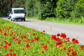 Safe and enjoyable journey poppies growing right near the asphalt road a car driving on the road Stock Photography