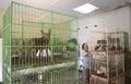 Safekeeping animals Royalty Free Stock Photo