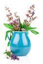 Sage flowers in a jug white background Royalty Free Stock Images