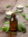 Sage oil Royalty Free Stock Photo