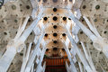 Sagrada Familia Ceiling Royalty Free Stock Image