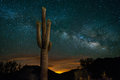Saguaro Cactus and Milky Way Royalty Free Stock Photo